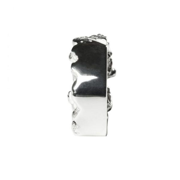 Zydrune Anomaly jewellery, 'Breakup Jam' Silver ring back view.