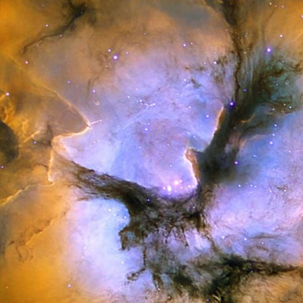 Celestial skies, inspiration for Zydrune 'Trifid' gemstone necklace.